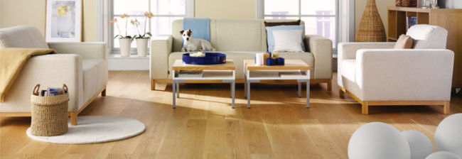 The Floor Authority Hardwood Flooring Laminate Flooring